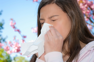 Blog - 4 Summer Allergy Relief Tips