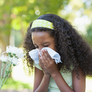 Blog - how to get rid of spring allergies